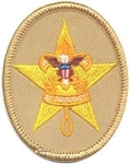 Boy Scout - Star Patch